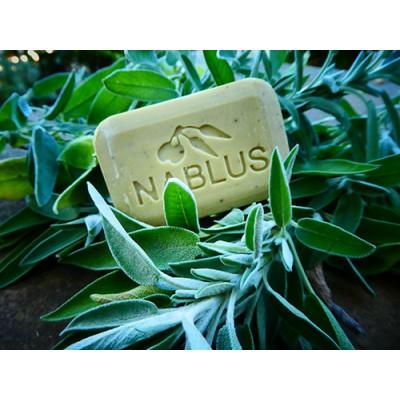 Sabó de Nablus (Salvia)