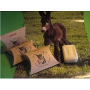 Donkey milk soap (100 gr.)